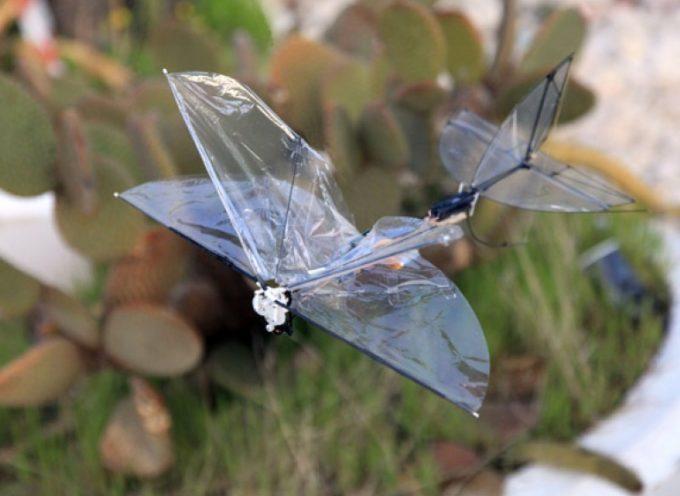 Israel desarrolla drones voladores con forma de mariposa