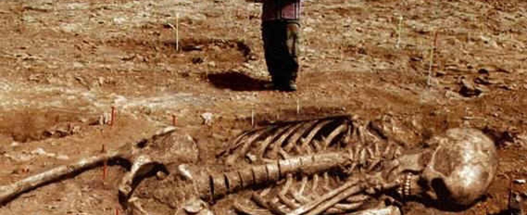 Encuentran restos de gigantes que serían los que menciona la Biblia