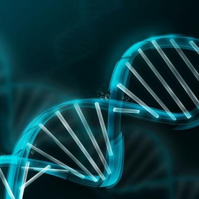 Google comienza a almacenar genomas