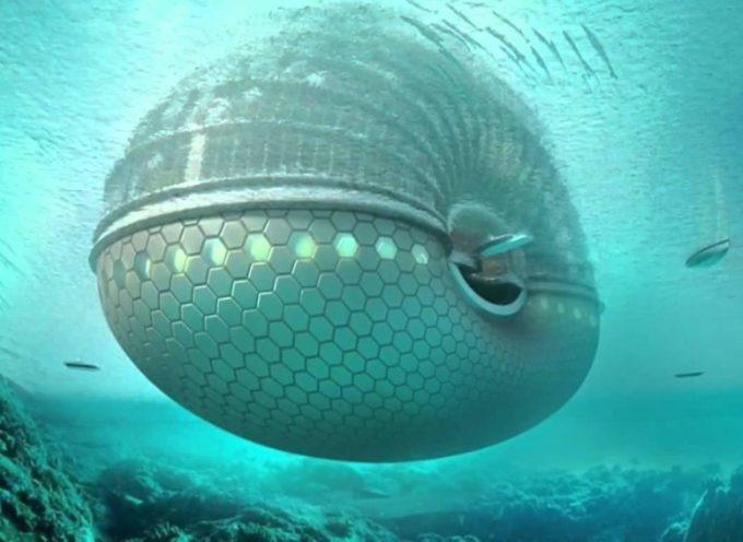Rusia construye un arca de Noé para el fin del mundo