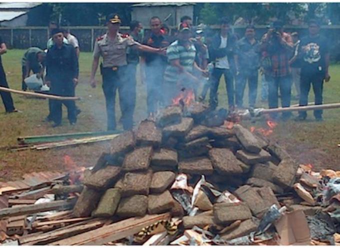 Insolito: La Policía quemó marihuana e intoxicó a los vecinos
