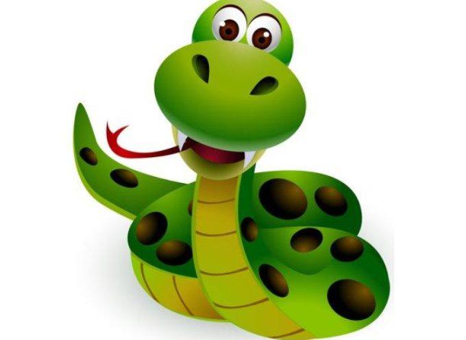 Insolito: Pastor enseña a fieles a tragar serpientes diciendo que se convertirán en chocolate