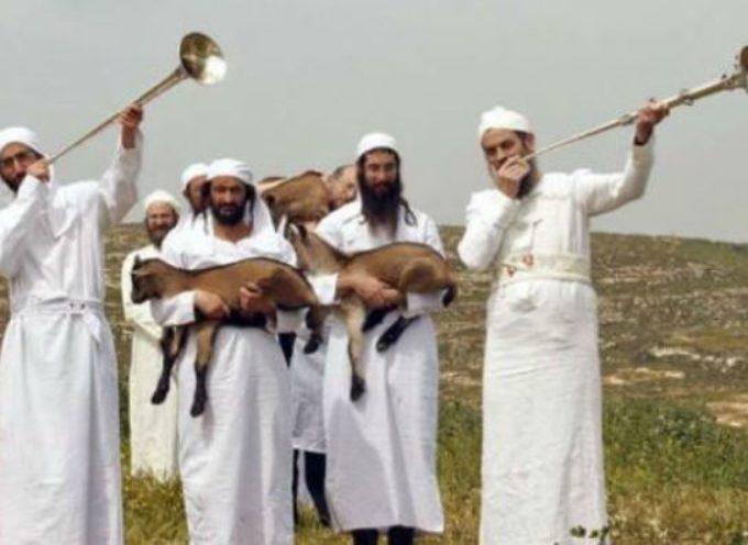 """Comienza la selección de los sacerdotes para el """"Tercer Templo"""" en Israel"""