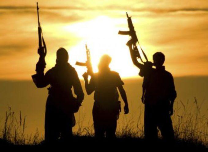 ISIS enseña la práctica del canibalismo en escuelas de Oriente Medio