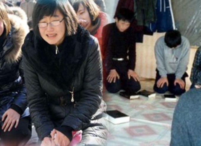 Misioneros Corea de Norte: Evangelizaremos hasta derramar nuestra última gota de sangre