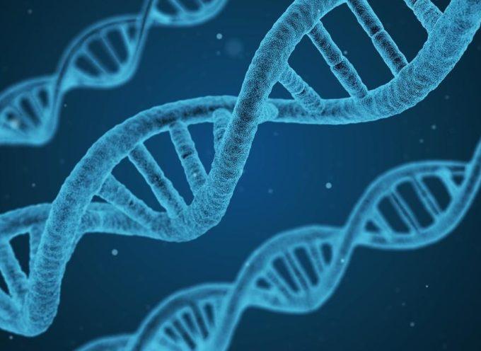 Pruebas genéticas podrían demostrar que la mayoría de mundo tiene ADN judío