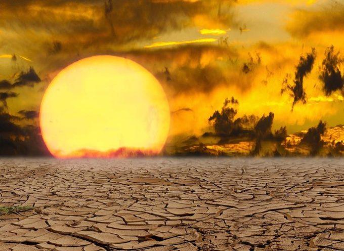 """""""Se nos acaba el tiempo"""": 15.000 científicos alertan del terrible destino de la humanidad"""
